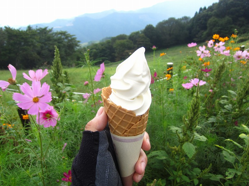 秩父郡東秩父村「秩父高原牧場」のソフトクリームとコーヒー牛乳 ~マイナー錬編~