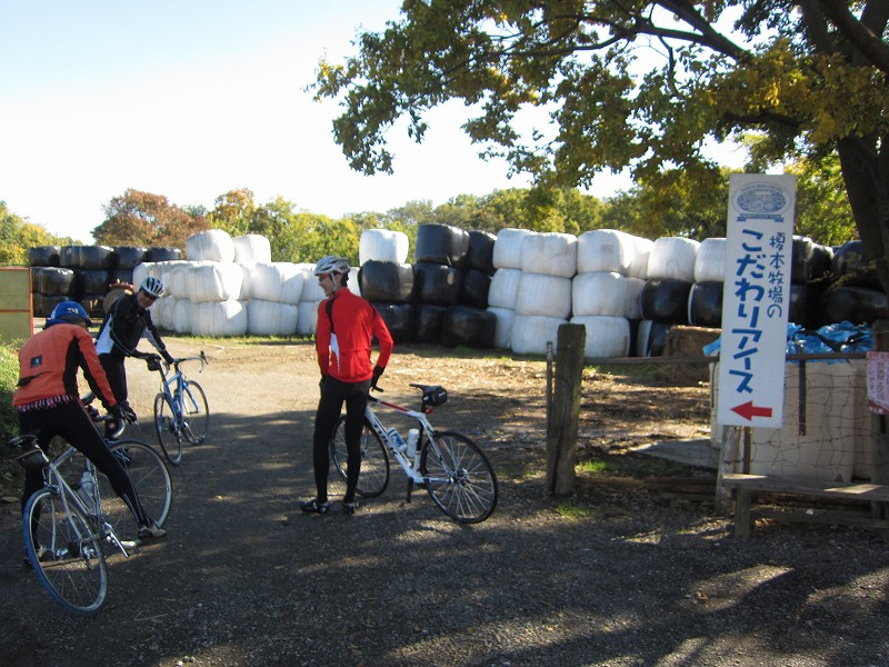 自転車で行く! 11月のマイナー錬! 荒川CR~榎本牧場