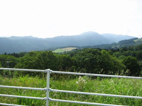 一面のポピーが今まさに満開!秩父郡東秩父村の天空のポピー畑 その2
