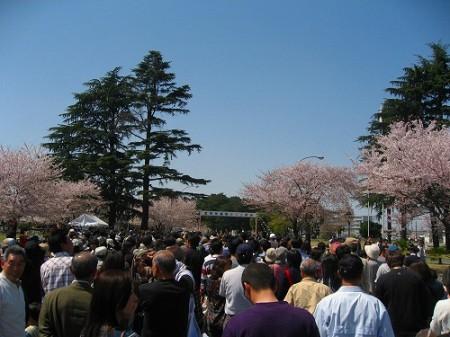 航空自衛隊熊谷基地のさくら祭り