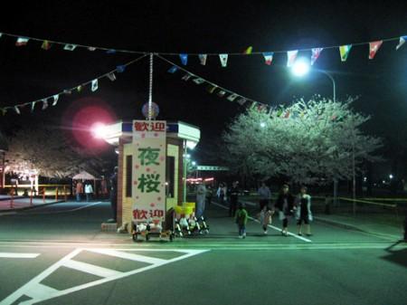 熊谷航空自衛隊基地の夜桜見物