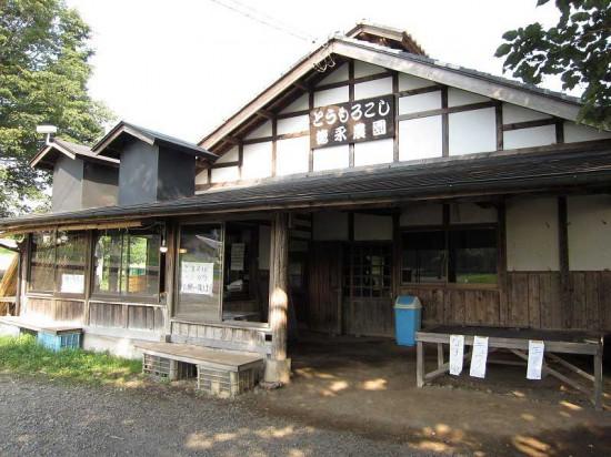 s-tokunaga02