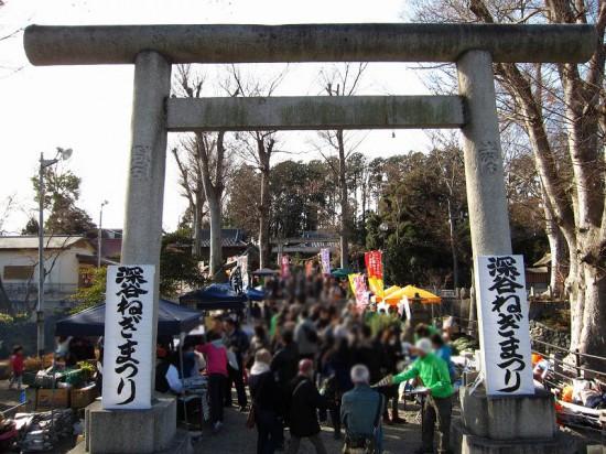 s-negimatsuri2014_01