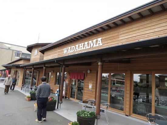 wadahama01