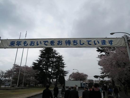 KBsakura2015_11
