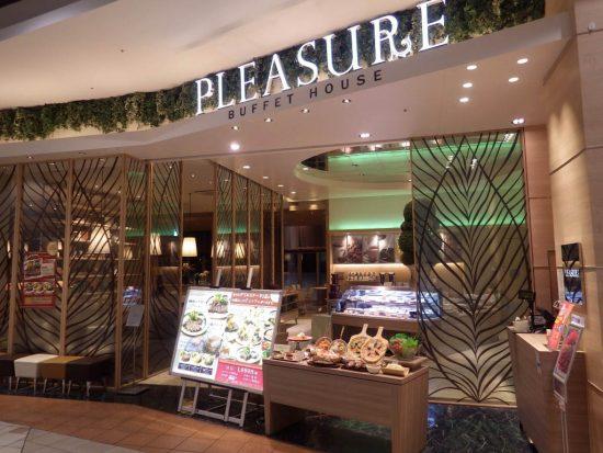 pleasure01